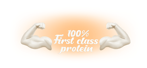 100% First Class Protein